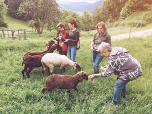 Schule am Bauernhof Maixenberg